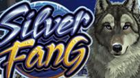 Игровые автоматы Silver Fang – онлайн-автомат от Microgaming для азартного досуга